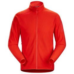 Arcteryx Mens Delta LT Jacket, XL, DYNASTY