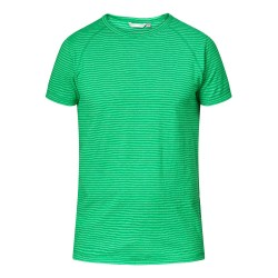 Tierra Mens Kaiparo Hemp Tee, S, LIZARD GREEN